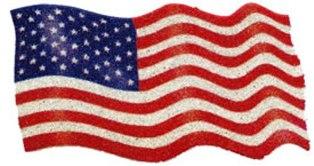 C941721 Patriotic American Flag Applique Cavair Bead Iron-On Patch
