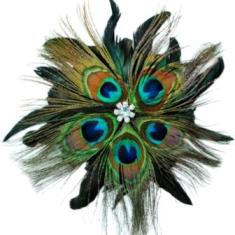 E4242 Peacock Rhinestone Feather Brooch Clip Applique
