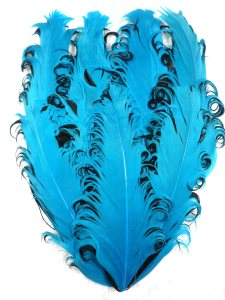 GB372 Feather Applique Dark Turquoise and Black Designer Patch 4""