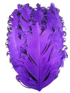 GB372 Feather Applique Purple and Black Designer Patch 4""