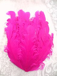 "MR28 DIY Fuchsia Feather Pad Applique  6"""