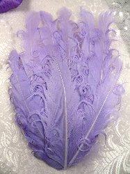 """MR28 DIY Lavender Feather Pad Applique  6"""""""