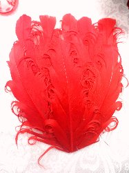 MR28 DIY Red Feather Pad Applique  6""