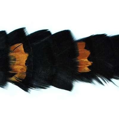 P4002 Brown & Black Feather Trim Pre-Cut 36
