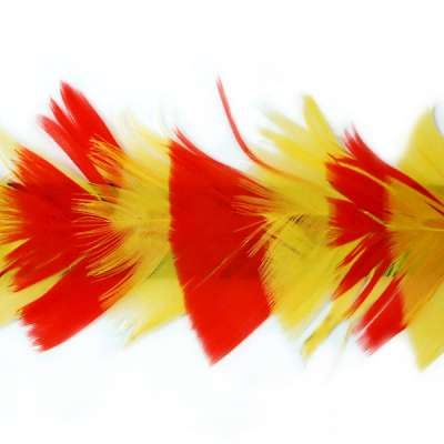 P4005 Red & Yellow Feather Trim Pre-Cut 36