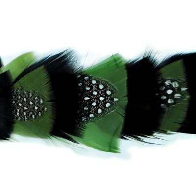 P4016 Olive & Black Feather Trim Pre-Cut 36