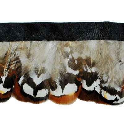 P4046 Brown & White Feather Trim Pre-Cut 36\