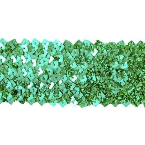 E4564  Green Stretch Starlight Sequin Trim