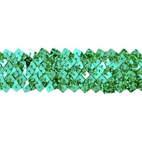E4568  Green Stretch Starlight Sequin Trim