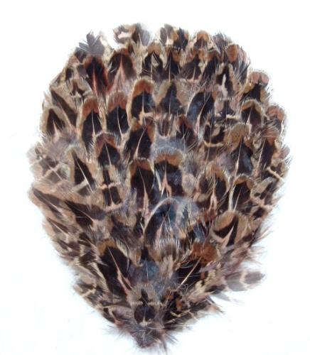 MR006  Pheasant Brown/Beige/Black Feather Applique