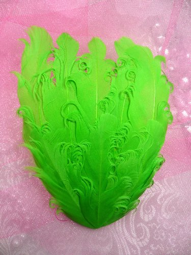 Mr28 Diy Green Feather Pad Lique 6