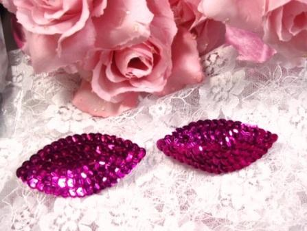K8263  Set of ( 2 )  Fuchsia Eye Pair Sequin  Appliques  2.5""