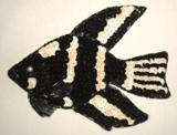 "Fish 5"" Sequin Beaded Applique Black K8258"