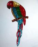 Parrot Sequin Beaded Applique MULTI K8746A Bird