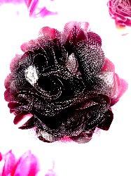 "DE4 Black Satin Rose Applique 3"""