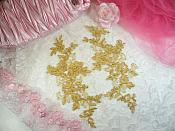 "Embroidered Venice Lace Appliques Gold Floral Venice Lace Mirror Pair 10"" (DH109X)"