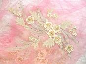 """REDUCED Embroidered 3D Appliques Beige Floral Mirror Pair Fabulous Detail w/ Pearls 13"""" (RMDH76X)"""