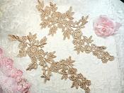 """Romantic Roses Embroidered Lace Appliques Champagne Floral Venice Lace Mirror Pair 13"""" (DH84X)"""