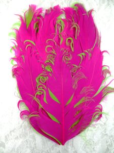 GB372 Feather Applique Fuchsia and Lime Designer Patch 4""