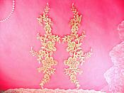 "Embroidered Appliques Champagne Mirror Pair Floral 12"" (GB459X)"