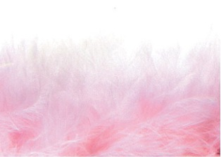 E3760  Pink Marabou Feather Fur Sewing Trim 2""