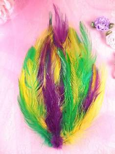 MR002  Mardi Gras Feather Pad Applique 7""