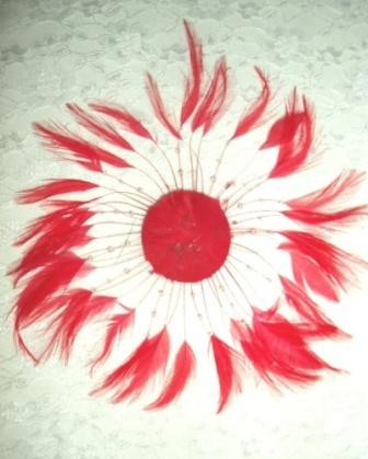 """MR004   Red Circle Feather Applique 8"""""""