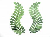 "Dark Green Embroidered Appliques Mirror Pair Iron On 7.5"" GB306X"
